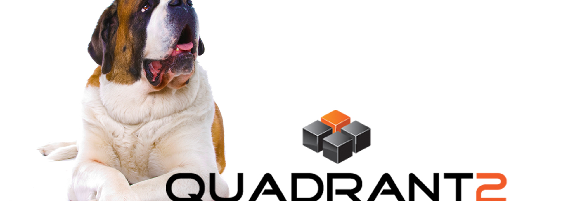 Quadrant dog logo